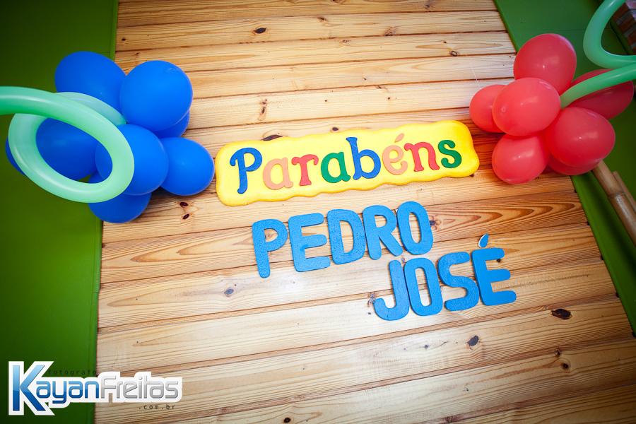 Pedro-jose-10011 Aniversário Infantil - 1 Ano de Pedro José