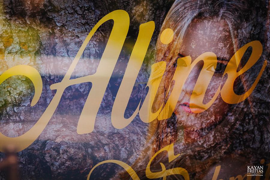 aniversario-15anos-aline-0021 Aline - Aniversário de 15 anos - Mansão Luchi